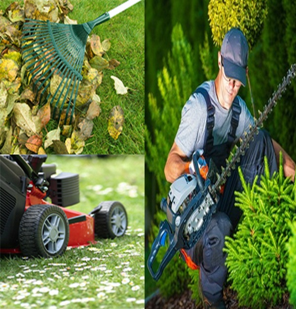 Société jardinage Tunisie